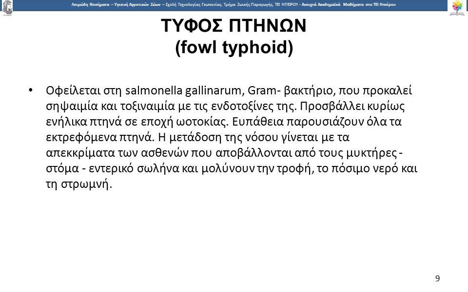9 Λοιμώδη Νοσήματα – Υγιεινή Αγροτικών Ζώων – Σχολή Τεχνολογίας Γεωπονίας, Τμήμα Ζωικής Παραγωγής, ΤΕΙ ΗΠΕΙΡΟΥ - Ανοιχτά Ακαδημαϊκά Μαθήματα στο ΤΕΙ Ηπείρου ΤΥΦΟΣ ΠΤΗΝΩΝ (fowl typhoid) Οφείλεται στη salmonella gallinarum, Gram- βακτήριο, που προκαλεί σηψαιμία και τοξιναιμία με τις ενδοτοξίνες της.