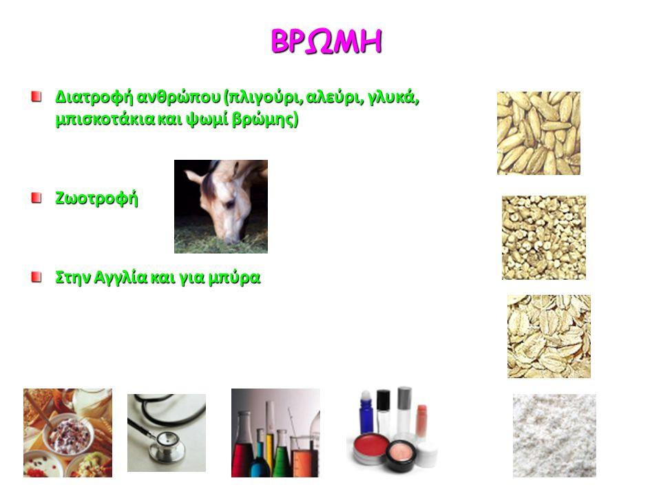 ΒΡΩΜΗ Διατροφή ανθρώπου (πλιγούρι, αλεύρι, γλυκά, μπισκοτάκια και ψωμί βρώμης) Ζωοτροφή Στην Αγγλία και για μπύρα