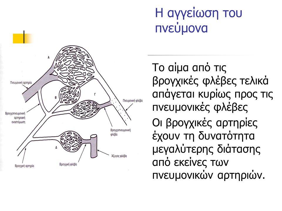 Η αγγείωση του πνεύμονα Το αίμα από τις βρογχικές φλέβες τελικά απάγεται κυρίως προς τις πνευμονικές φλέβες Οι βρογχικές αρτηρίες έχουν τη δυνατότητα μεγαλύτερης διάτασης από εκείνες των πνευμονικών αρτηριών.