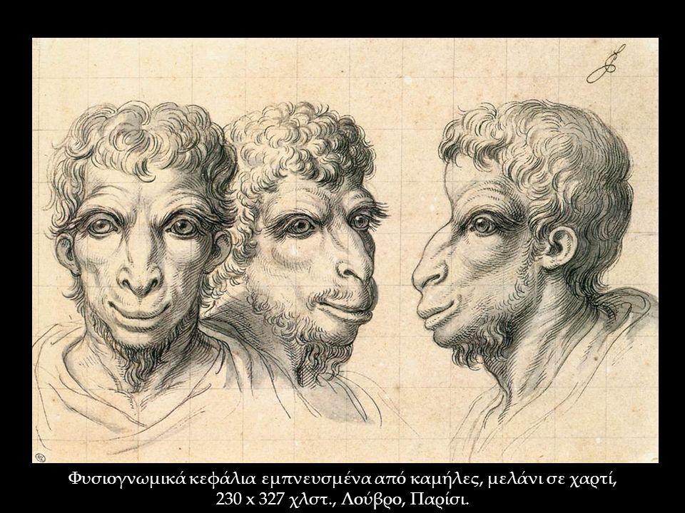 Φυσιογνωμικά κεφάλια εμπνευσμένα από καμήλες, μελάνι σε χαρτί, 230 x 327 χλστ., Λούβρο, Παρίσι.
