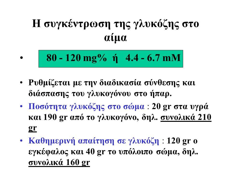 Η συγκέντρωση της γλυκόζης στο αίμα 80 - 120 mg% ή 4.4 - 6.7 mM Ρυθμίζεται με την διαδικασία σύνθεσης και διάσπασης του γλυκογόνου στο ήπαρ.