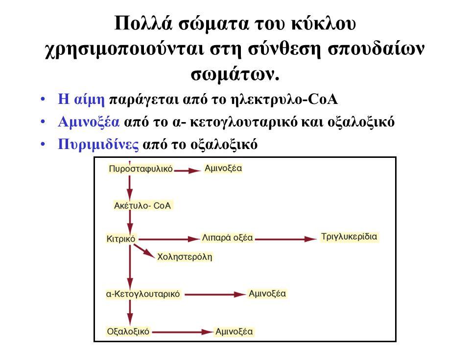 Πολλά σώματα του κύκλου χρησιμοποιούνται στη σύνθεση σπουδαίων σωμάτων.