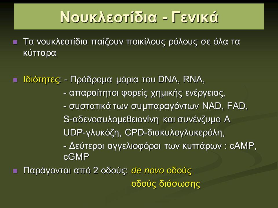 Νουκλεοτίδια - Γενικά Τα νουκλεοτίδια παίζουν ποικίλους ρόλους σε όλα τα κύτταρα Τα νουκλεοτίδια παίζουν ποικίλους ρόλους σε όλα τα κύτταρα Ιδιότητες: - Πρόδρομα μόρια του DNA, RNA, Ιδιότητες: - Πρόδρομα μόρια του DNA, RNA, - απαραίτητοι φορείς χημικής ενέργειας, - απαραίτητοι φορείς χημικής ενέργειας, - συστατικά των συμπαραγόντων NAD, FAD, - συστατικά των συμπαραγόντων NAD, FAD, S-αδενοσυλομεθειονίνη και συνένζυμο Α S-αδενοσυλομεθειονίνη και συνένζυμο Α UDP-γλυκόζη, CPD-διακυλογλυκερόλη, UDP-γλυκόζη, CPD-διακυλογλυκερόλη, - Δεύτεροι αγγελιοφόροι των κυττάρων : cAMP, cGMP - Δεύτεροι αγγελιοφόροι των κυττάρων : cAMP, cGMP Παράγονται από 2 οδούς: de novo οδούς Παράγονται από 2 οδούς: de novo οδούς οδούς διάσωσης οδούς διάσωσης