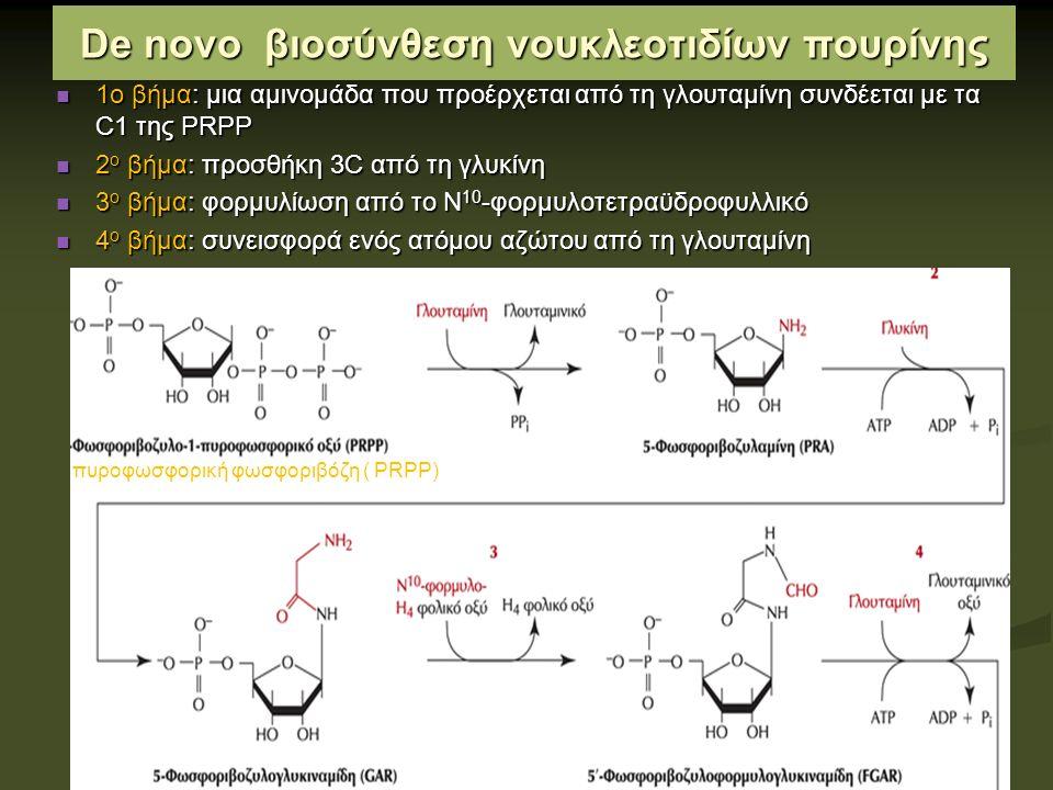 Οι βάσεις πουρίνης και πυριμιδίνης ανακυκλώνονται με οδούς διάσωσης Ελεύθερες βάσεις πουρίνης και πυριμιδίνης παράγονται συνεχώς στα κύτταρα κατά την μεταβολική αποδόμηση των νουκλεοτιδίων Οι ελεύθερες πουρίνες σε μεγάλο βαθμό διασώζονται και ξαναχρησιμοποιούνται για τη σύνθεση νουκλεοτιδίων σε μια απλούστερη οδό συγκριτικά με τη de novo σύνθεση Μια κύρια οδός διάσωσης η αντίδραση αδενίνης με PRPP και απόδοση νουκλεοτιδίου αδενίνης : Αδενίνη+ PRPP  ΑΜΡ +ΡΡι (ένζυμο: φωσφοριβοζυλοτρανσφεράση της αδενοσίνης) Η ελεύθερη γουανίνη και υποξανθίνη διασώζονται κατά τον ίδιο τρόπο από τη φωσφοζυλοτρανσφεράση υποξανθίνης- γουανίνης.
