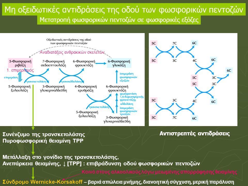 Συνένζυμο της τρανσκετολάσης Πυροφωσφορική θειαμίνη ΤΡΡ Μετάλλαξη στο γονίδιο της τρανσκετολάσης, Ανεπάρκεια θειαμίνης, ↓ [ΤΡΡ] : επιβράδυνση οδού φωσ