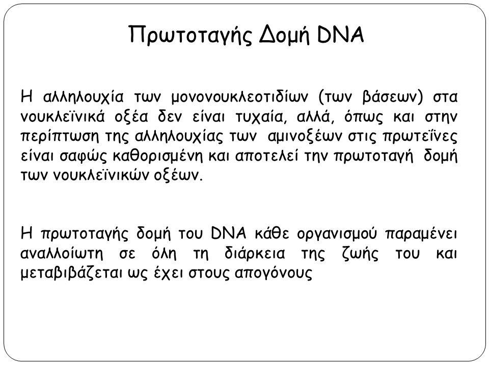 Πρωτοταγής Δομή DNA Η αλληλουχία των μονονουκλεοτιδίων (των βάσεων) στα νουκλεϊνικά οξέα δεν είναι τυχαία, αλλά, όπως και στην περίπτωση της αλληλουχί