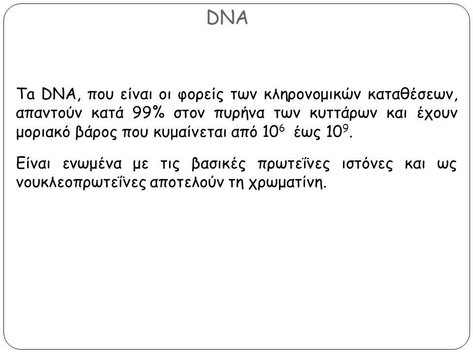 DNA Ta DNA, που είναι οι φορείς των κληρονομικών καταθέσεων, απαντούν κατά 99% στον πυρήνα των κυττάρων και έχουν μοριακό βάρος που κυμαίνεται από 10