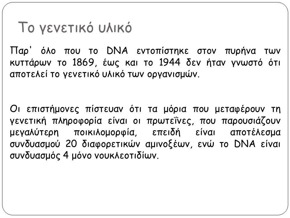 Το γενετικό υλικό Παρ' όλο που το DNA εντοπίστηκε στον πυρήνα των κυττάρων το 1869, έως και το 1944 δεν ήταν γνωστό ότι αποτελεί το γενετικό υλικό των