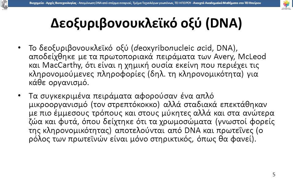 5 Βιοχημεία - Αρχές Βιοτεχνολογίας - Απομόνωση DNA από σπέρμα σιταριού, Τμήμα Τεχνολόγων γεωπόνων, ΤΕΙ ΗΠΕΙΡΟΥ - Ανοιχτά Ακαδημαϊκά Μαθήματα στο ΤΕΙ Ηπείρου Δεοξυριβονουκλεϊκό οξύ (DNA) Το δεοξυριβονουκλεϊκό οξύ (deoxyribonucleic acid, DNA), αποδείχθηκε με τα πρωτοποριακά πειράματα των Avery, McLeod και MacCarthy, ότι είναι η χημική ουσία εκείνη που περιέχει τις κληρονομούμενες πληροφορίες (δηλ.
