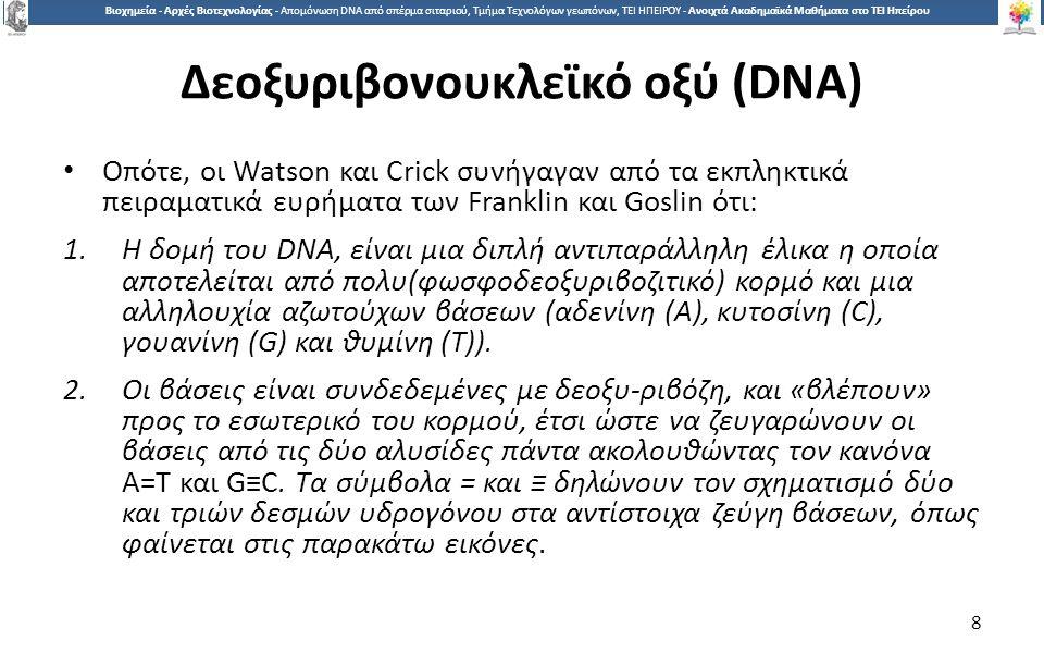 8 Βιοχημεία - Αρχές Βιοτεχνολογίας - Απομόνωση DNA από σπέρμα σιταριού, Τμήμα Τεχνολόγων γεωπόνων, ΤΕΙ ΗΠΕΙΡΟΥ - Ανοιχτά Ακαδημαϊκά Μαθήματα στο ΤΕΙ Ηπείρου Δεοξυριβονουκλεϊκό οξύ (DNA) Οπότε, οι Watson και Crick συνήγαγαν από τα εκπληκτικά πειραματικά ευρήματα των Franklin και Goslin ότι: 1.Η δομή του DNA, είναι μια διπλή αντιπαράλληλη έλικα η οποία αποτελείται από πολυ(φωσφοδεοξυριβοζιτικό) κορμό και μια αλληλουχία αζωτούχων βάσεων (αδενίνη (Α), κυτοσίνη (C), γουανίνη (G) και θυμίνη (Τ)).