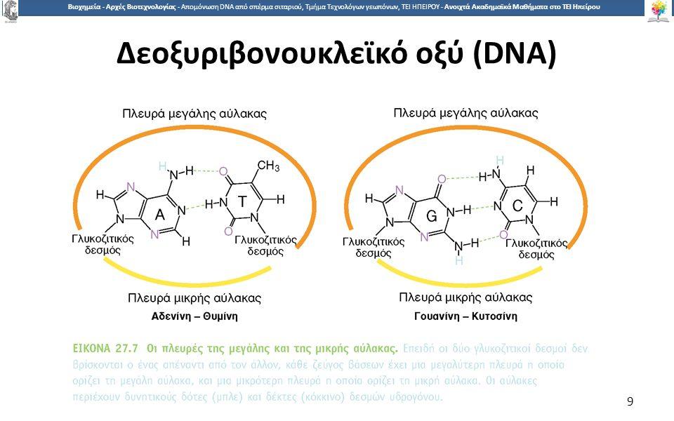 9 Βιοχημεία - Αρχές Βιοτεχνολογίας - Απομόνωση DNA από σπέρμα σιταριού, Τμήμα Τεχνολόγων γεωπόνων, ΤΕΙ ΗΠΕΙΡΟΥ - Ανοιχτά Ακαδημαϊκά Μαθήματα στο ΤΕΙ Ηπείρου Δεοξυριβονουκλεϊκό οξύ (DNA) 9
