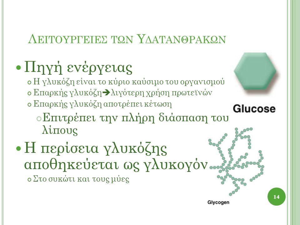Λ ΕΙΤΟΥΡΓΕΙΕΣ ΤΩΝ Υ ΔΑΤΑΝΘΡΑΚΩΝ Πηγή ενέργειας Η γλυκόζη είναι το κύριο καύσιμο του οργανισμού Επαρκής γλυκόζη  λιγότερη χρήση πρωτεϊνών Επαρκής γλυκόζη αποτρέπει κέτωση Επιτρέπει την πλήρη διάσπαση του λίπους Η περίσεια γλυκόζης αποθηκεύεται ως γλυκογόνο Στο συκώτι και τους μύες 14