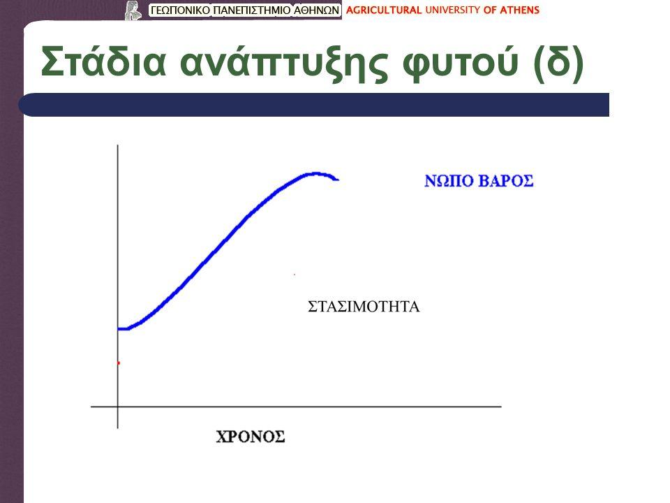 Στάδια ανάπτυξης φυτού (δ)