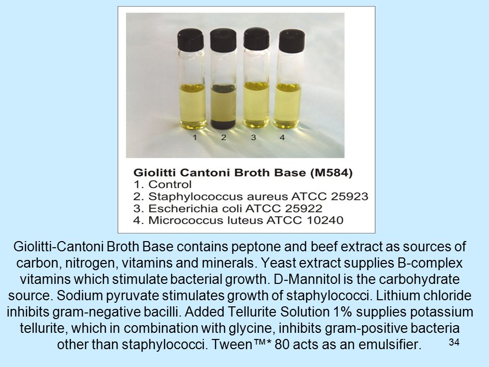 34 Giolitti-Cantoni Broth Base contains peptone and beef extract as sources of carbon, nitrogen, vitamins and minerals.