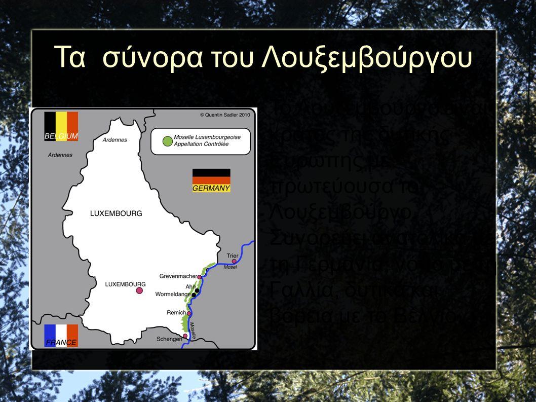 Τα σύνορα του Λουξεμβούργου Το Λουξεμβούργο είναι κράτος της δυτικής Ευρώπης με πρωτεύουσα το Λουξεμβούργο. Συνορεύει ανατολικά με τη Γερμανία, νότια