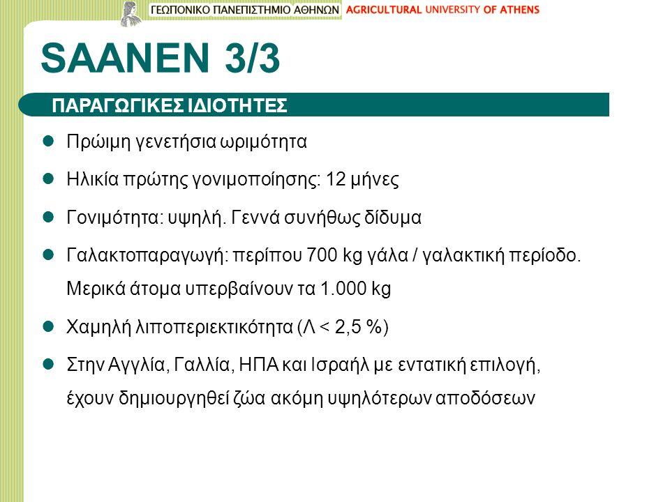 SAANEN 3/3 Πρώιμη γενετήσια ωριμότητα Ηλικία πρώτης γονιμοποίησης: 12 μήνες Γονιμότητα: υψηλή.