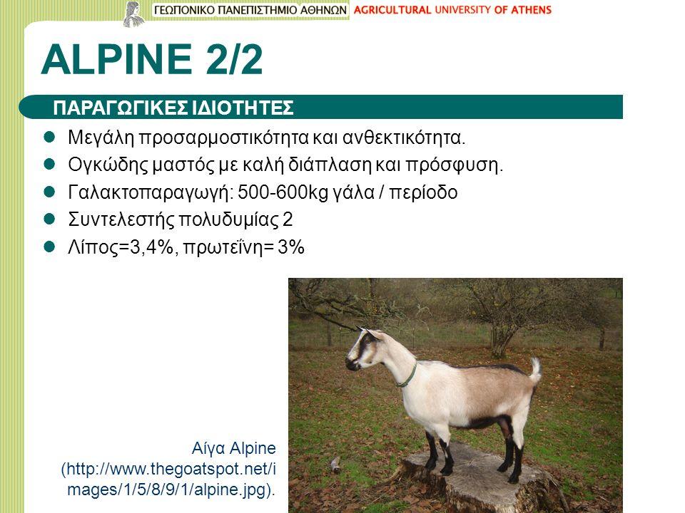 ALPINE 2/2 Μεγάλη προσαρμοστικότητα και ανθεκτικότητα.