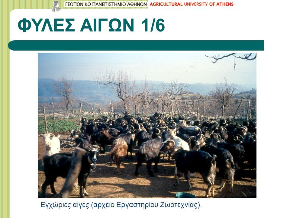 Βιβλιογραφία Κατσαούνης Ν.& Δ. Ζυγογιάννης (2009): Γιδοτροφία, εκδ.