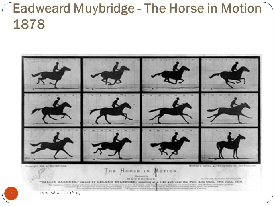 Eadweard Muybridge - The Horse in Motion 1878 1 ο Γυμν. Φιλιππιάδας 7