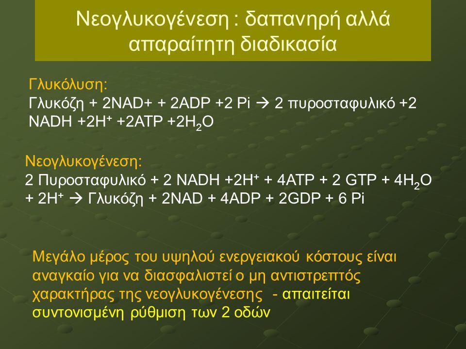 Νεογλυκογένεση : δαπανηρή αλλά απαραίτητη διαδικασία Γλυκόλυση: Γλυκόζη + 2NAD+ + 2ADP +2 Pi  2 πυροσταφυλικό +2 NADH +2H + +2ATP +2H 2 O Νεογλυκογένεση: 2 Πυροσταφυλικό + 2 NADH +2H + + 4ATP + 2 GTP + 4H 2 O + 2H +  Γλυκόζη + 2NAD + 4ADP + 2GDP + 6 Pi Μεγάλο μέρος του υψηλού ενεργειακού κόστους είναι αναγκαίο για να διασφαλιστεί ο μη αντιστρεπτός χαρακτήρας της νεογλυκογένεσης - απαιτείται συντονισμένη ρύθμιση των 2 οδών