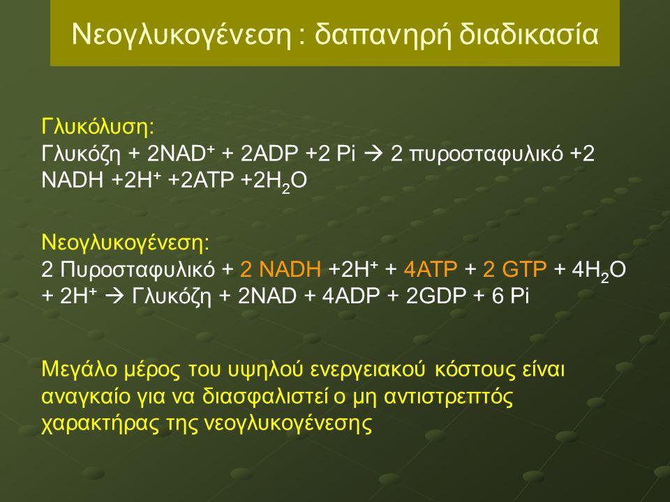 4 ΙΣΟΕΝΖΥΜΑ (Ι, ΙΙ, ΙΙΙ, IV) - Μύες: εξοκινάση Ι, ΙΙ - Υψηλή συγγένεια για τη γλυκόζη - Υφίστανται αλλοστερική αναστολή (παροδική και αντιστρεπτή) από την 6-φωσφορική γλυκόζη Εξοκινάση