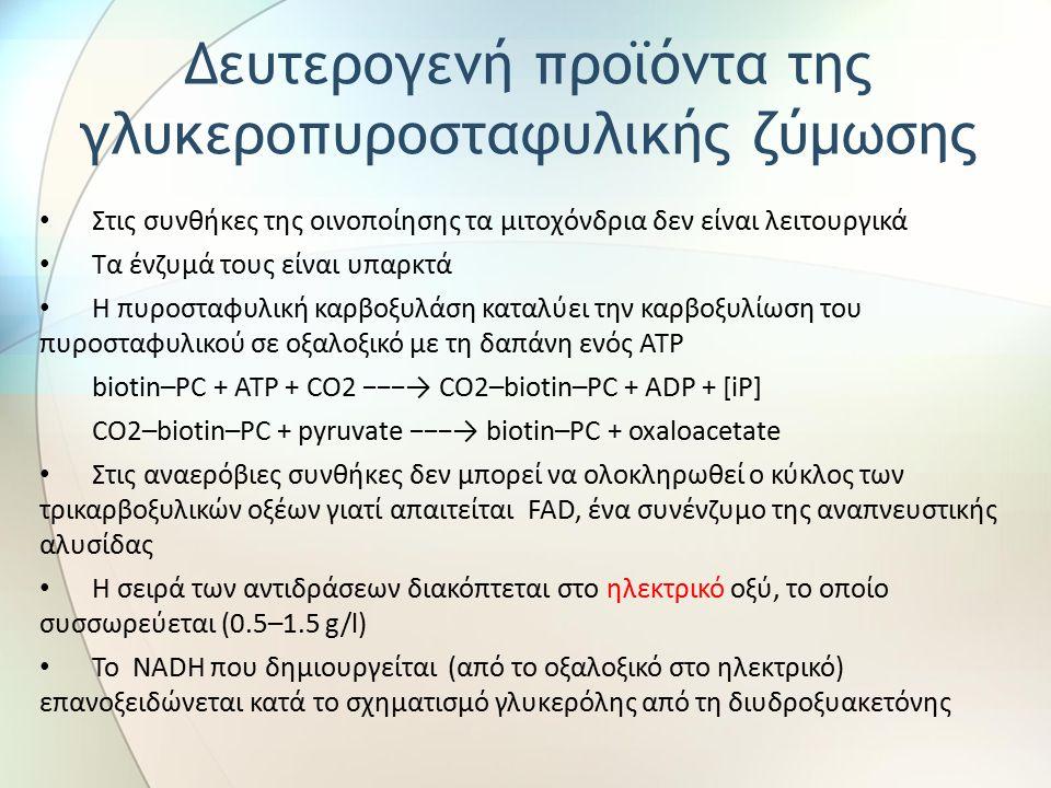 Στις συνθήκες της οινοποίησης τα μιτοχόνδρια δεν είναι λειτουργικά Τα ένζυμά τους είναι υπαρκτά Η πυροσταφυλική καρβοξυλάση καταλύει την καρβοξυλίωση του πυροσταφυλικού σε οξαλοξικό με τη δαπάνη ενός ΑΤΡ biotin–PC + ATP + CO2 −−−→ CO2–biotin–PC + ADP + [iP] CO2–biotin–PC + pyruvate −−−→ biotin–PC + oxaloacetate Στις αναερόβιες συνθήκες δεν μπορεί να ολοκληρωθεί ο κύκλος των τρικαρβοξυλικών οξέων γιατί απαιτείται FAD, ένα συνένζυμο της αναπνευστικής αλυσίδας Η σειρά των αντιδράσεων διακόπτεται στο ηλεκτρικό οξύ, το οποίο συσσωρεύεται (0.5–1.5 g/l) Το NADH που δημιουργείται (από το οξαλοξικό στο ηλεκτρικό) επανοξειδώνεται κατά το σχηματισμό γλυκερόλης από τη διυδροξυακετόνης Δευτερογενή προϊόντα της γλυκεροπυροσταφυλικής ζύμωσης