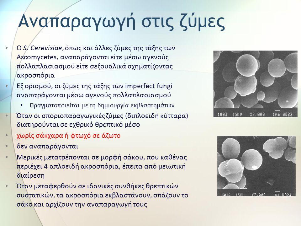 Αναπαραγωγή στις ζύμες Ο S. Cerevisiae, όπως και άλλες ζύμες της τάξης των Ascomycetes, αναπαράγονται είτε μέσω αγενούς πολλαπλασιασμού είτε σεξουαλικ