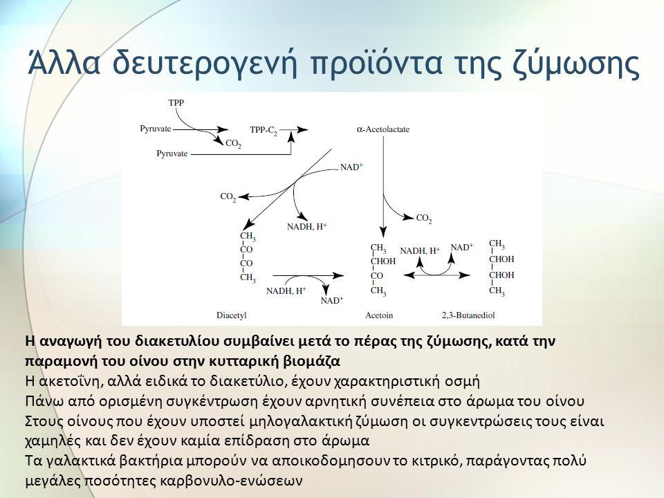 Η αναγωγή του διακετυλίου συμβαίνει μετά το πέρας της ζύμωσης, κατά την παραμονή του οίνου στην κυτταρική βιομάζα Η ακετοΐνη, αλλά ειδικά το διακετύλιο, έχουν χαρακτηριστική οσμή Πάνω από ορισμένη συγκέντρωση έχουν αρνητική συνέπεια στο άρωμα του οίνου Στους οίνους που έχουν υποστεί μηλογαλακτική ζύμωση οι συγκεντρώσεις τους είναι χαμηλές και δεν έχουν καμία επίδραση στο άρωμα Τα γαλακτικά βακτήρια μπορούν να αποικοδομησουν το κιτρικό, παράγοντας πολύ μεγάλες ποσότητες καρβονυλο-ενώσεων Άλλα δευτερογενή προϊόντα της ζύμωσης