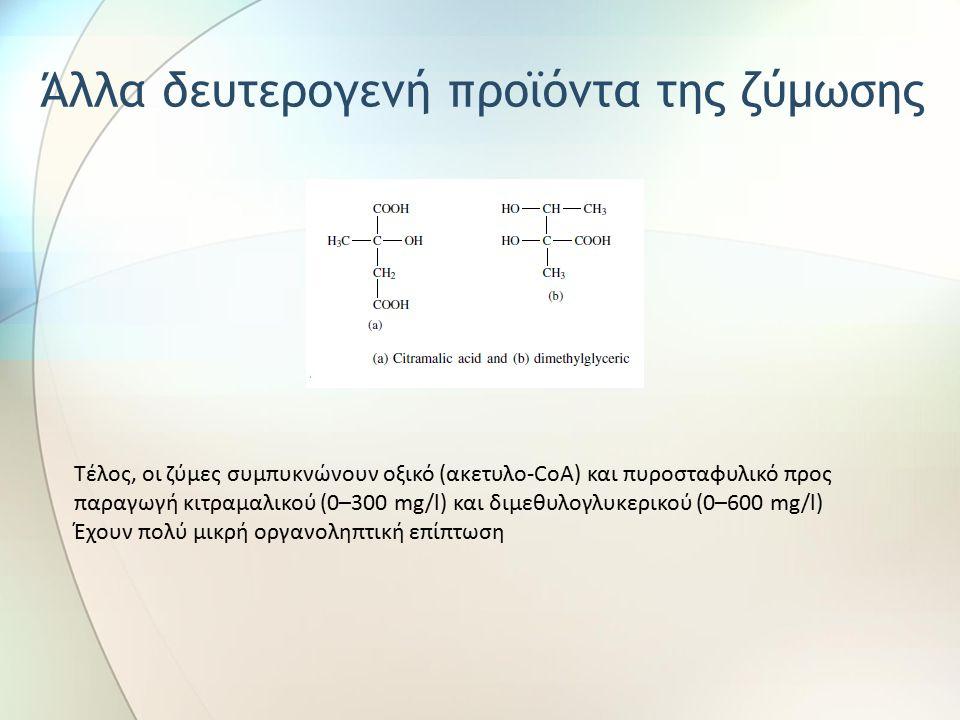 Τέλος, οι ζύμες συμπυκνώνουν οξικό (ακετυλο-CoA) και πυροσταφυλικό προς παραγωγή κιτραμαλικού (0–300 mg/l) και διμεθυλογλυκερικού (0–600 mg/l) Έχουν πολύ μικρή οργανοληπτική επίπτωση Άλλα δευτερογενή προϊόντα της ζύμωσης