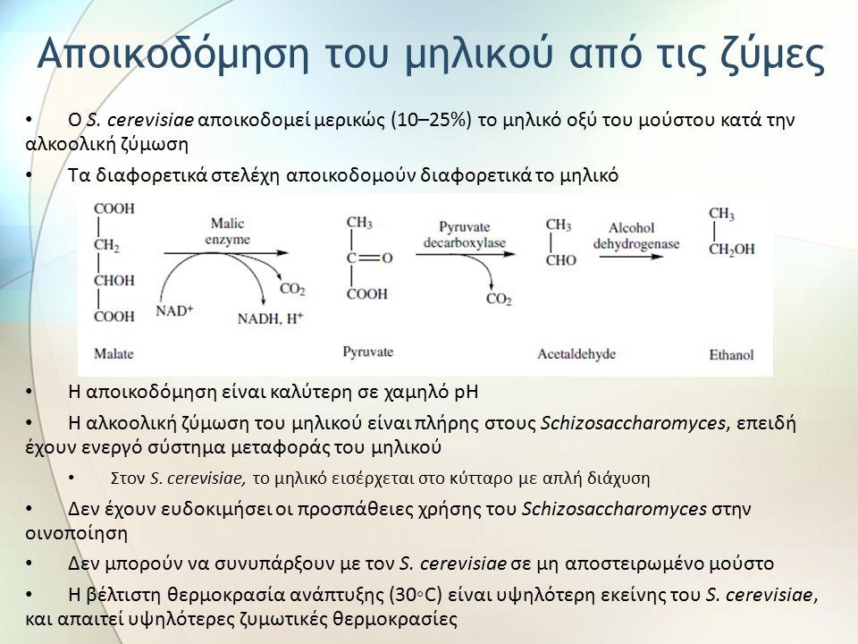 Ο S. cerevisiae αποικοδομεί μερικώς (10–25%) το μηλικό οξύ του μούστου κατά την αλκοολική ζύμωση Τα διαφορετικά στελέχη αποικοδομούν διαφορετικά το μη