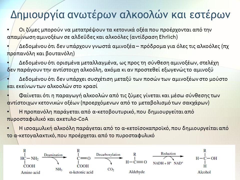 Οι ζύμες μπορούν να μετατρέψουν τα κετονικά οξέα που προέρχονται από την απαμίνωση αμινοξέων σε αλδεΰδες και αλκοόλες (αντίδραση Ehrlich) Δεδομένου ότ
