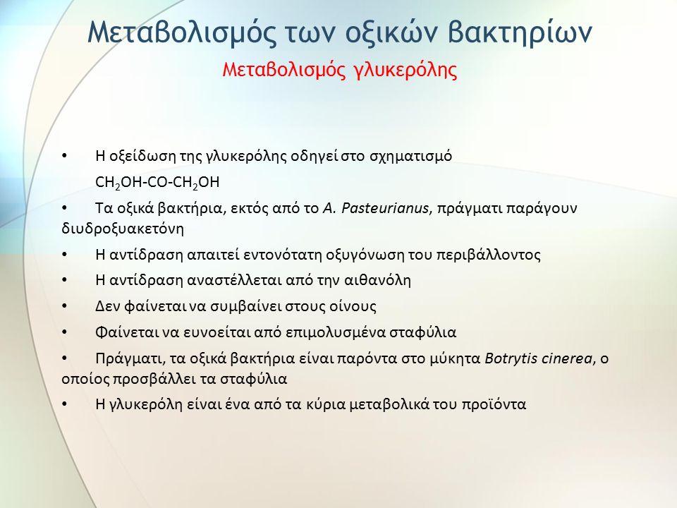 Η οξείδωση της γλυκερόλης οδηγεί στο σχηματισμό CH 2 OH-CO-CH 2 OH Τα οξικά βακτήρια, εκτός από το A. Pasteurianus, πράγματι παράγουν διυδροξυακετόνη