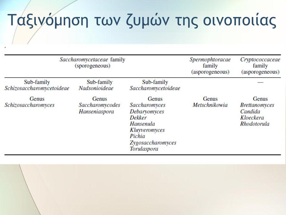 Οι συνθήκες οινοποίησης που οδηγούν σε αυξημένα ποσά οξικού από τον S.