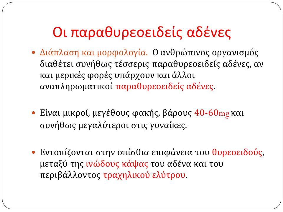 Οι παραθυρεοειδείς αδένες Διάπλαση και μορφολογία.
