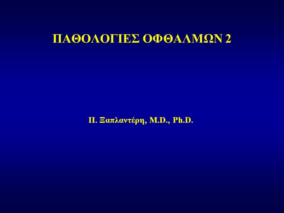 Π. Ξαπλαντέρη, M.D., Ph.D. ΠΑΘΟΛΟΓΙΕΣ ΟΦΘΑΛΜΩΝ 2
