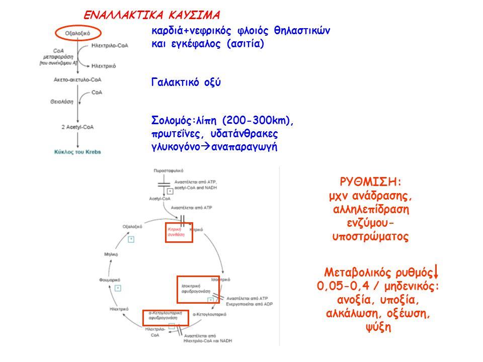 καρδιά+νεφρικός φλοιός θηλαστικών και εγκέφαλος (ασιτία) Γαλακτικό οξύ Σολομός:λίπη (200-300km), πρωτεΐνες, υδατάνθρακες γλυκογόνο  αναπαραγωγή ΡΥΘΜΙΣΗ: μχν ανάδρασης, αλληλεπίδραση ενζύμου- υποστρώματος Μεταβολικός ρυθμός 0,05-0,4 / μηδενικός: ανοξία, υποξία, αλκάλωση, οξέωση, ψύξη ΕΝΑΛΛΑΚΤΙΚΑ ΚΑΥΣΙΜΑ
