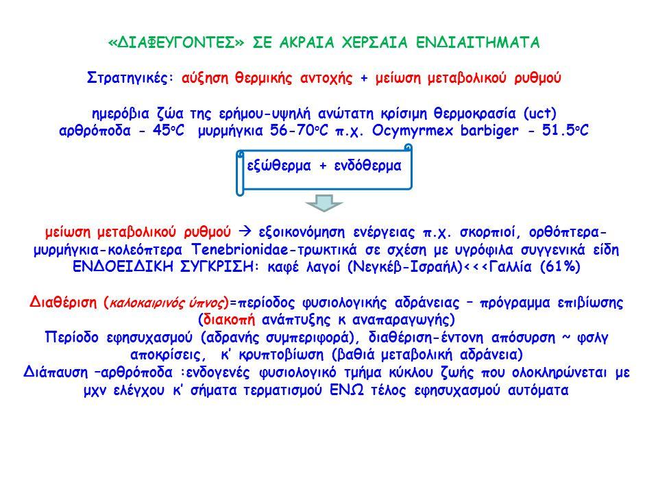 «ΔΙΑΦΕΥΓΟΝΤΕΣ» ΣΕ ΑΚΡΑΙΑ ΧΕΡΣΑΙΑ ΕΝΔΙΑΙΤΗΜΑΤΑ Στρατηγικές: αύξηση θερμικής αντοχής + μείωση μεταβολικού ρυθμού ημερόβια ζώα της ερήμου-υψηλή ανώτατη κρίσιμη θερμοκρασία (uct) αρθρόποδα - 45 ο C μυρμήγκια 56-70 ο C π.χ.