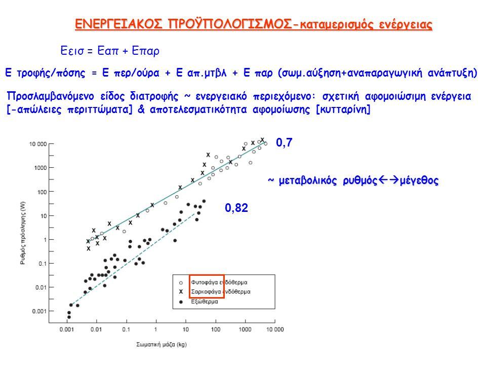 ΕΝΕΡΓΕΙΑΚΟΣ ΠΡΟΫΠΟΛΟΓΙΣΜΟΣ-καταμερισμός ενέργειας Εεισ = Εαπ + Επαρ Ε τροφής/πόσης = Ε περ/ούρα + Ε απ.μτβλ + Ε παρ (σωμ.αύξηση+αναπαραγωγική ανάπτυξη) Προσλαμβανόμενο είδος διατροφής ~ ενεργειακό περιεχόμενο: σχετική αφομοιώσιμη ενέργεια [-απώλειες περιττώματα] & αποτελεσματικότητα αφομοίωσης [κυτταρίνη] 0,82 0,7 ~ μεταβολικός ρυθμός  μέγεθος