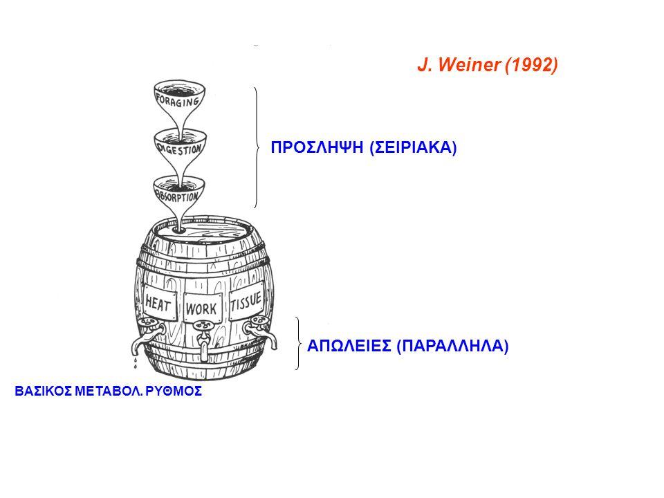 J. Weiner (1992) ΠΡΟΣΛΗΨΗ (ΣΕΙΡΙΑΚΑ) ΑΠΩΛΕΙΕΣ (ΠΑΡΑΛΛΗΛΑ) ΒΑΣΙΚΟΣ ΜΕΤΑΒΟΛ. ΡΥΘΜΟΣ