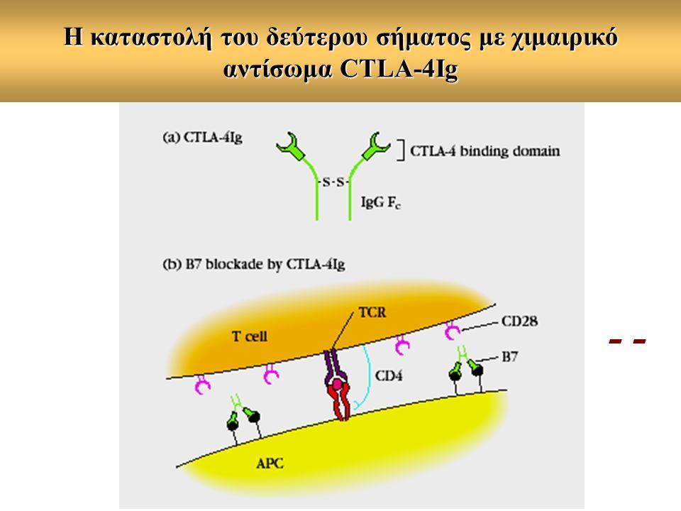 Η καταστολή του δεύτερου σήματος με χιμαιρικό αντίσωμα CTLA-4Ig -