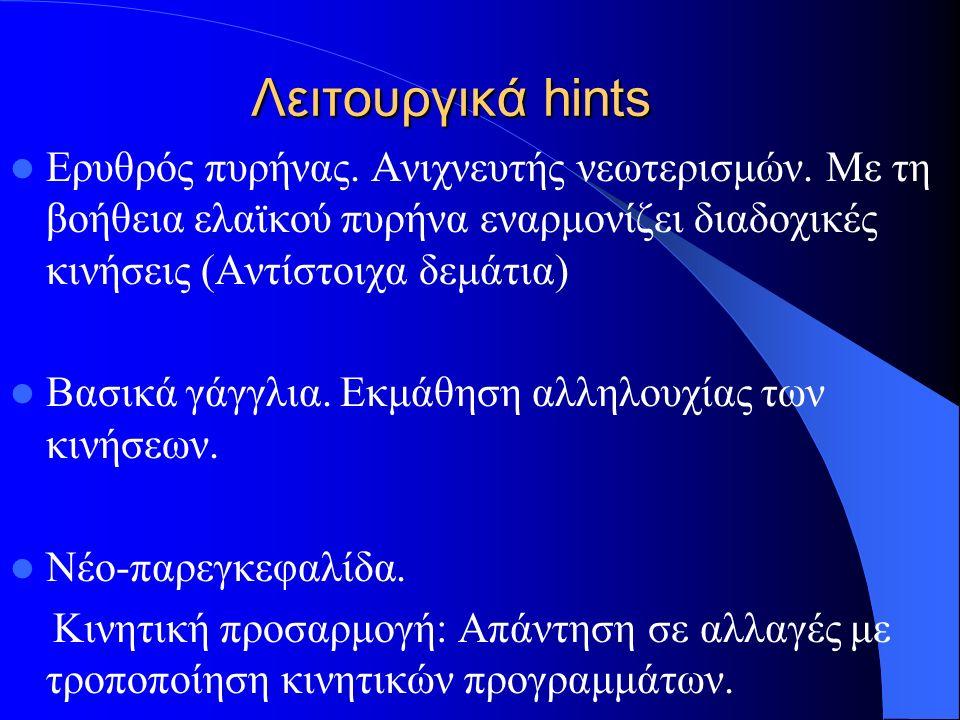 Λειτουργικά hints Ερυθρός πυρήνας. Ανιχνευτής νεωτερισμών. Με τη βοήθεια ελαϊκού πυρήνα εναρμονίζει διαδοχικές κινήσεις (Αντίστοιχα δεμάτια) Βασικά γά
