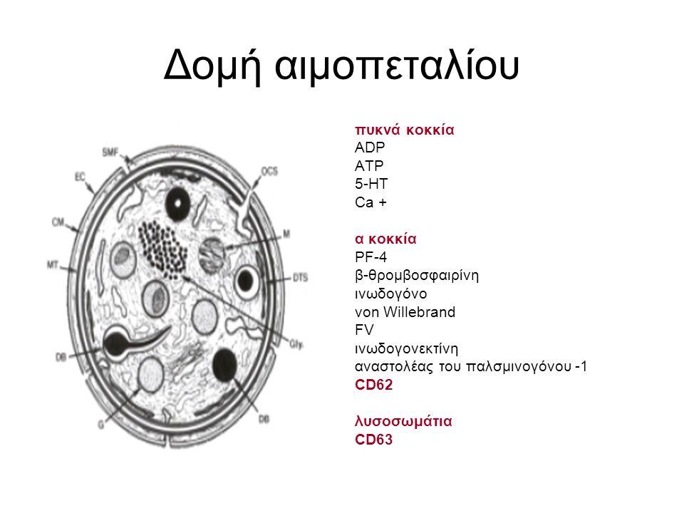 Δομή αιμοπεταλίου πυκνά κοκκία ADP ATP 5-HT Ca + α κοκκία PF-4 β-θρομβοσφαιρίνη ινωδογόνο von Willebrand FV ινωδογονεκτίνη αναστολέας του παλσμινογόνου -1 CD62 λυσοσωμάτια CD63