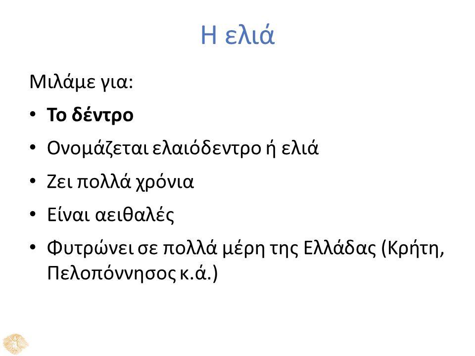 Η ελιά Μιλάμε για: Το δέντρο Ονομάζεται ελαιόδεντρο ή ελιά Ζει πολλά χρόνια Είναι αειθαλές Φυτρώνει σε πολλά μέρη της Ελλάδας (Κρήτη, Πελοπόννησος κ.ά.)