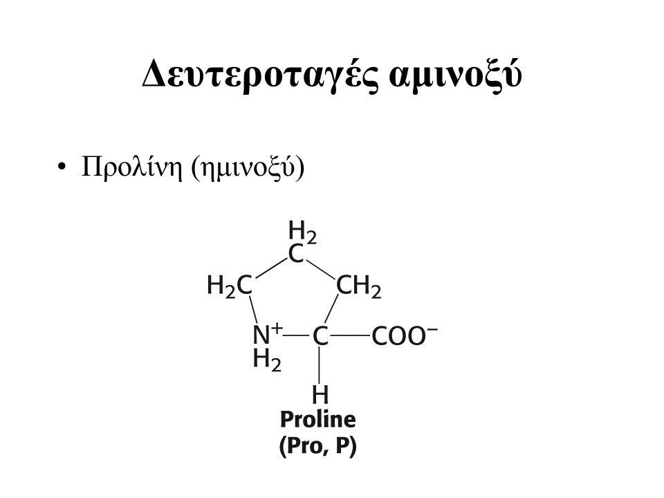 Δευτεροταγές αμινοξύ Προλίνη (ημινοξύ)