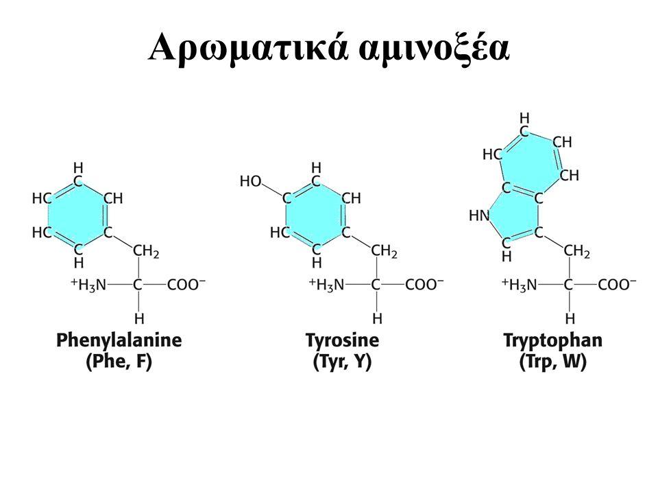 Αρωματικά αμινοξέα Amino acids (Aromatic)