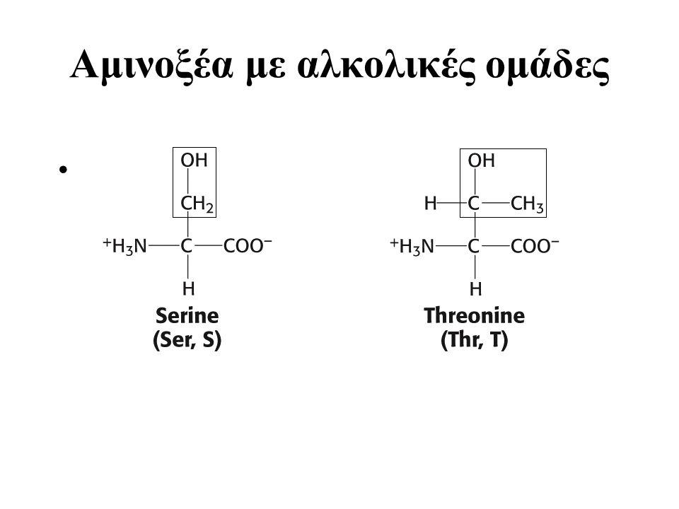 Αμινοξέα με αλκολικές ομάδες Amino acids (Alcohols)