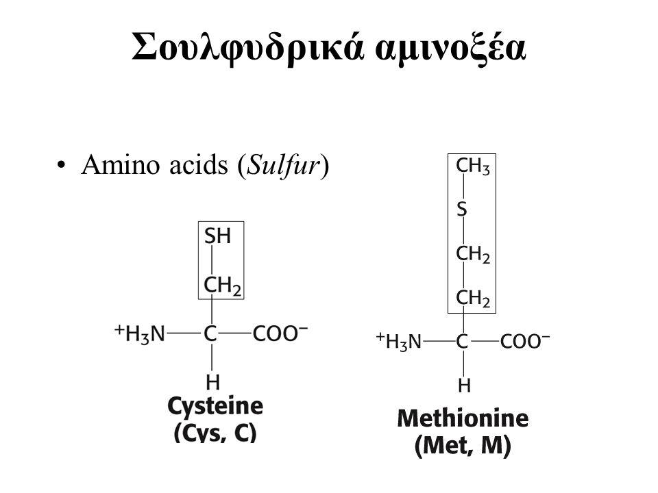 Σουλφυδρικά αμινοξέα Amino acids (Sulfur)