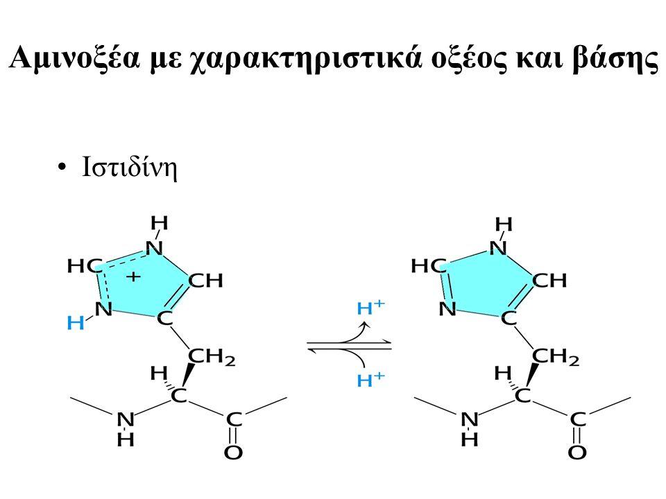 Αμινοξέα με χαρακτηριστικά οξέος και βάσης Ιστιδίνη
