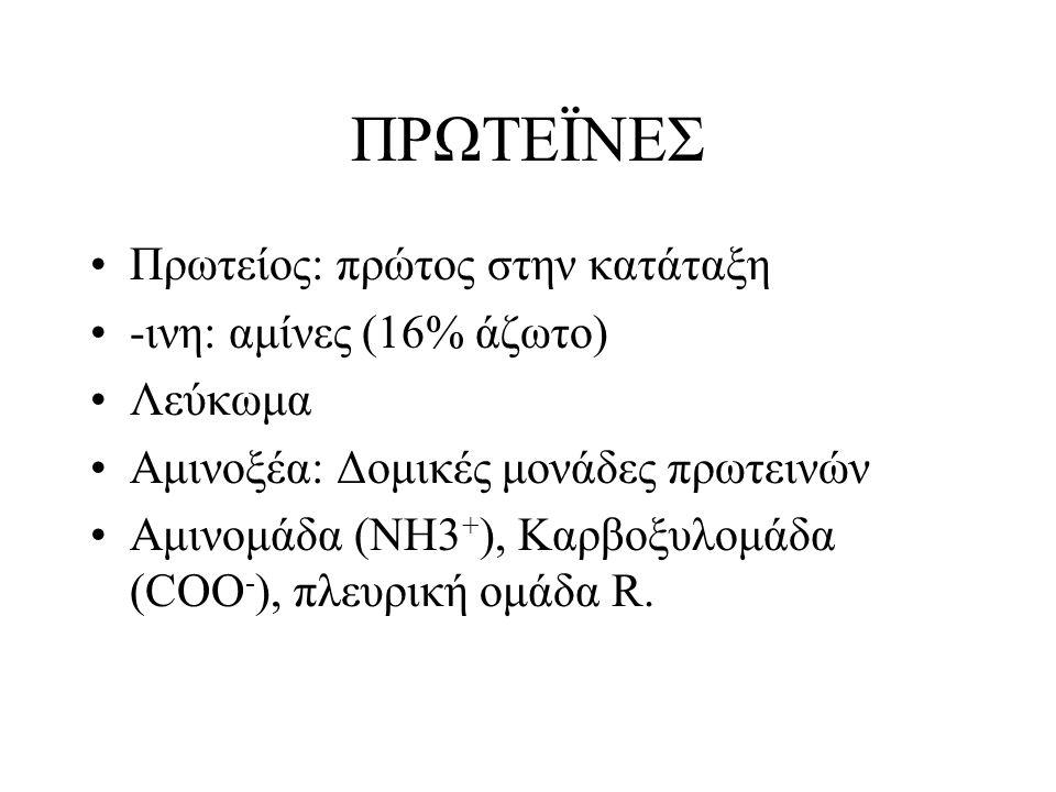ΠΡΩΤΕΪΝΕΣ Πρωτείος: πρώτος στην κατάταξη -ινη: αμίνες (16% άζωτο) Λεύκωμα Αμινοξέα: Δομικές μονάδες πρωτεινών Αμινομάδα (ΝΗ3 + ), Καρβοξυλομάδα (COO -