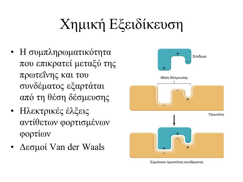 Χημική Εξειδίκευση Η συμπληρωματικότητα που επικρατεί μεταξύ της πρωτεΐνης και του συνδέματος εξαρτάται από τη θέση δέσμευσης Ηλεκτρικές έλξεις αντίθε
